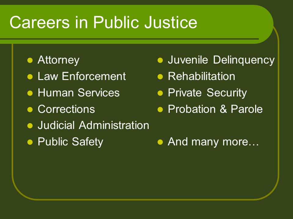 Careers in Public Justice Juvenile Delinquency Rehabilitation Private Security Probation & Parole And many more… Attorney Law Enforcement Human Services Corrections Judicial Administration Public Safety
