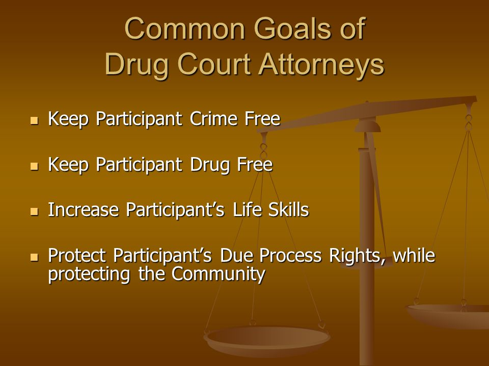 Common Goals of Drug Court Attorneys Keep Participant Crime Free Keep Participant Crime Free Keep Participant Drug Free Keep Participant Drug Free Increase Participant's Life Skills Increase Participant's Life Skills Protect Participant's Due Process Rights, while protecting the Community Protect Participant's Due Process Rights, while protecting the Community