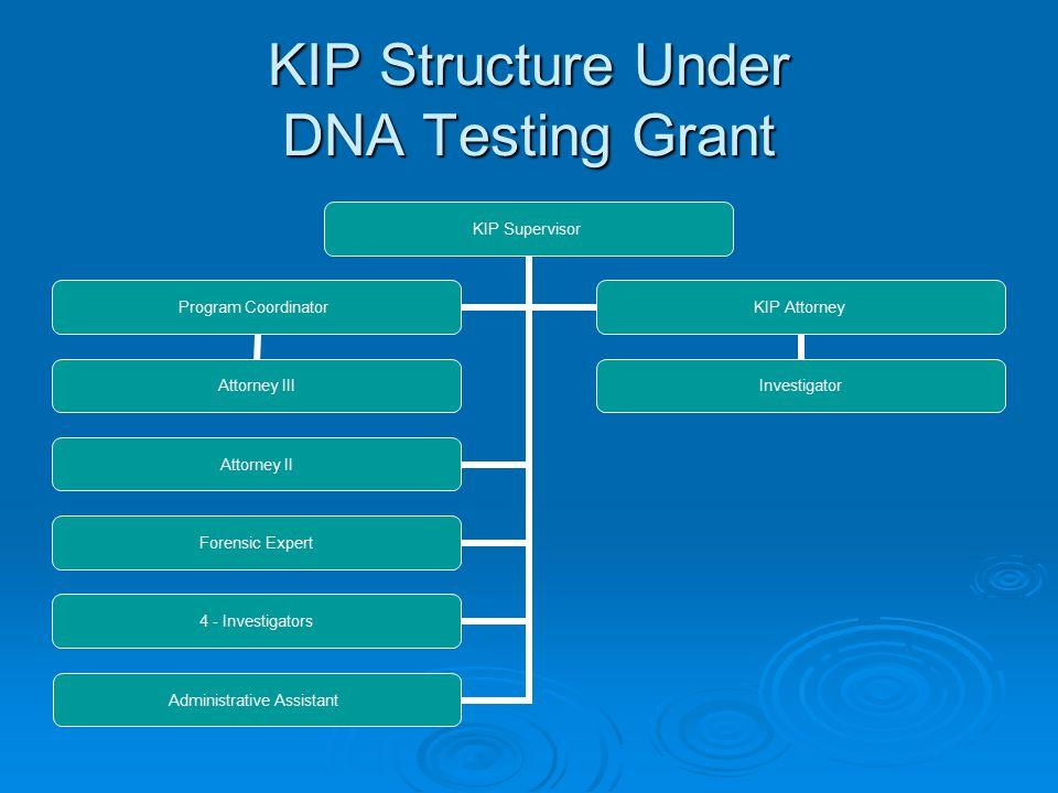 KIP Structure Under DNA Testing Grant KIP Supervisor Attorney II Forensic Expert 4 - Investigators Administrative Assistant Program Coordinator Attorney III KIP Attorney Investigator