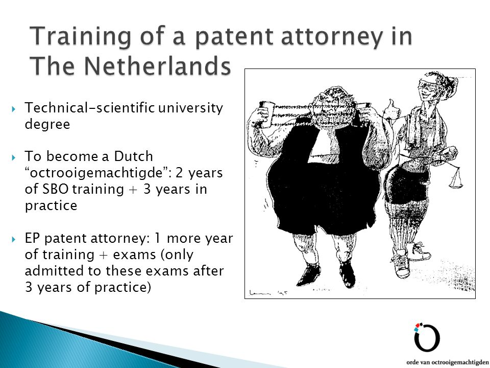  Technical-scientific university degree  To become a Dutch octrooigemachtigde : 2 years of SBO training + 3 years in practice  EP patent attorney: 1 more year of training + exams (only admitted to these exams after 3 years of practice)