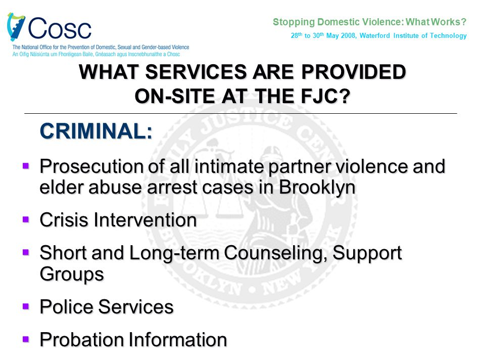 Stopping Domestic Violence: What Works? 28 th to 30 th May 2008, Waterford Institute of Technology WHAT SERVICES ARE PROVIDED ON-SITE AT THE FJC? CRIM
