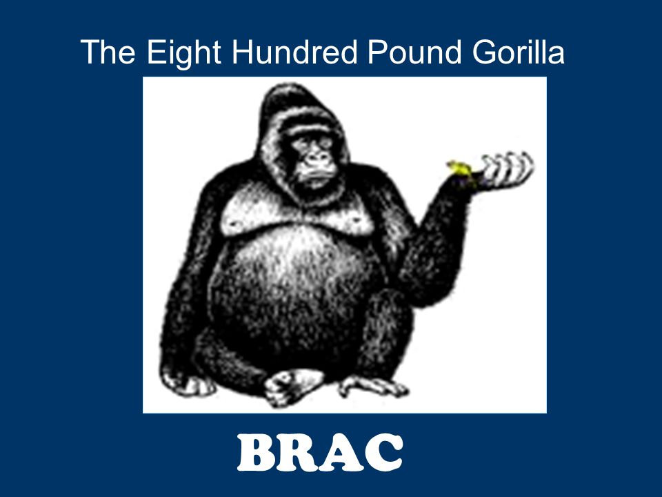 BRAC The Eight Hundred Pound Gorilla