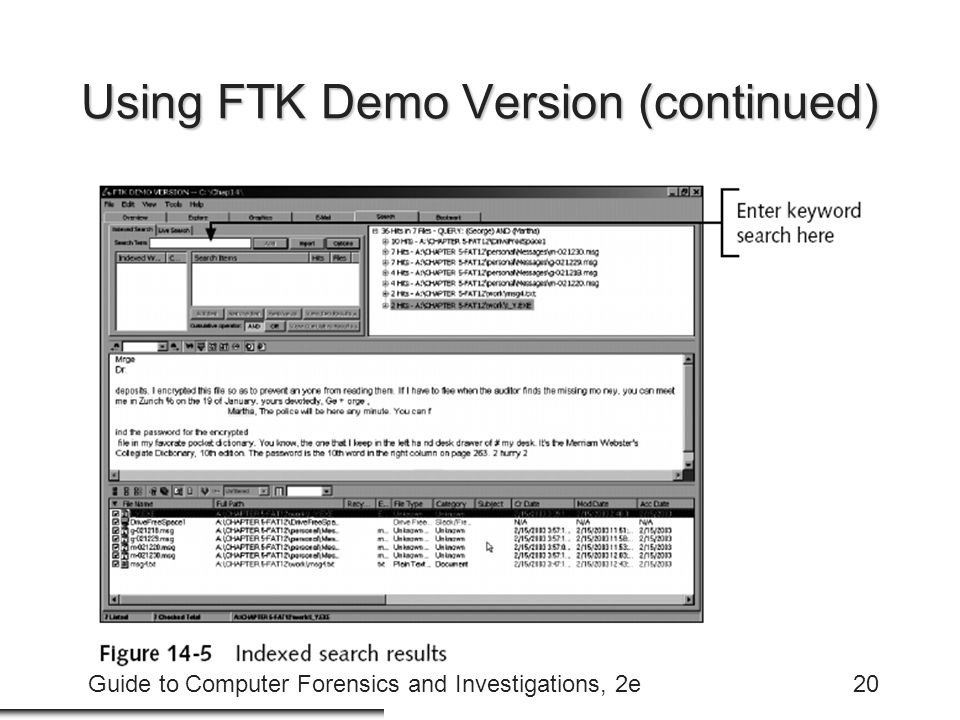 Guide to Computer Forensics and Investigations, 2e20 Using FTK Demo Version (continued)