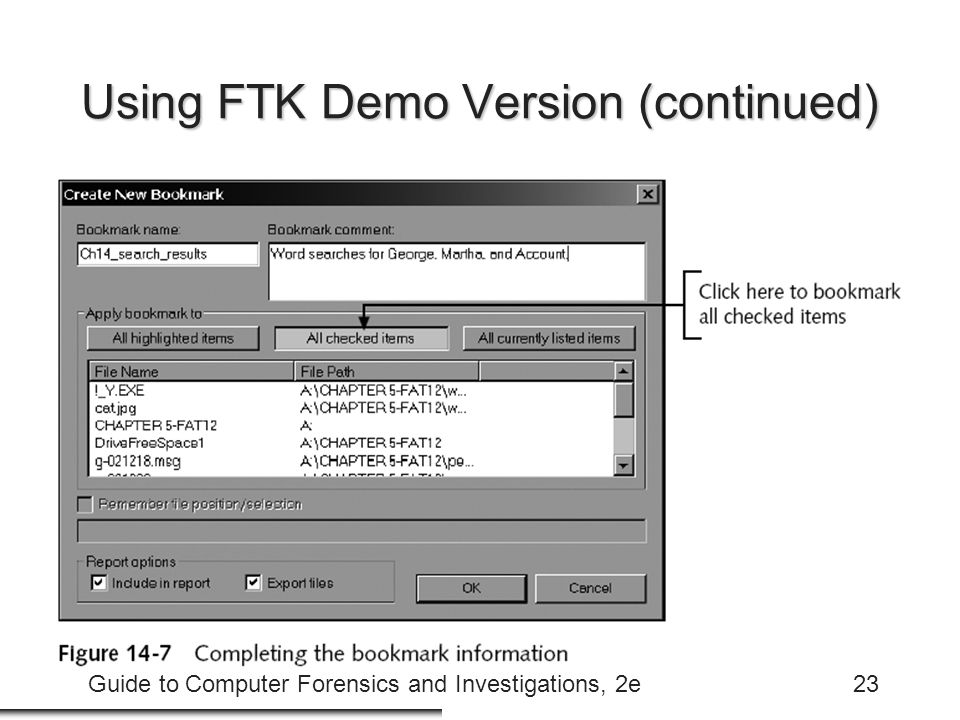 Guide to Computer Forensics and Investigations, 2e23 Using FTK Demo Version (continued)
