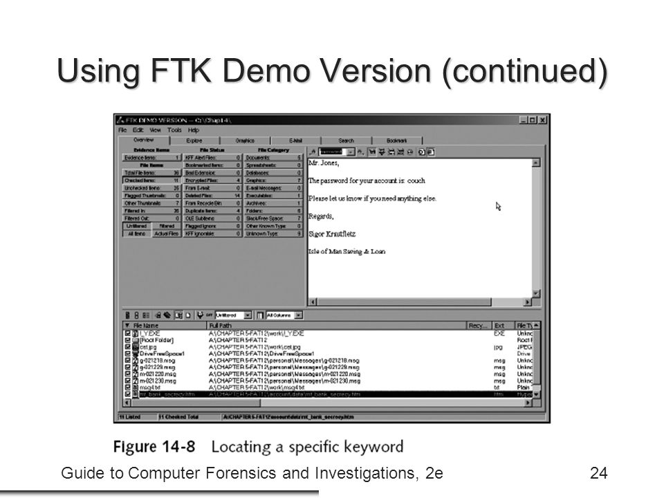 Guide to Computer Forensics and Investigations, 2e24 Using FTK Demo Version (continued)