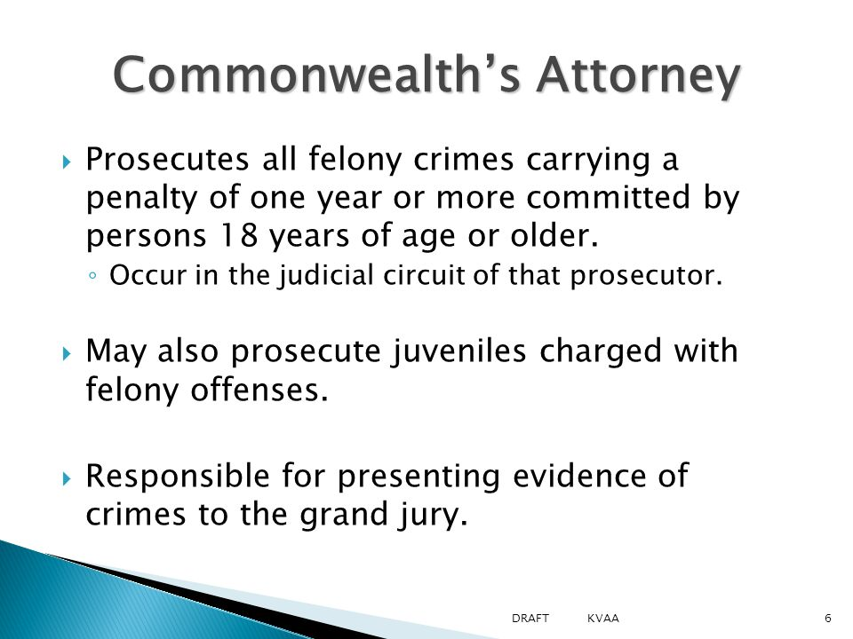  Prosecutes all felony crimes carrying a penalty of one year or more committed by persons 18 years of age or older.