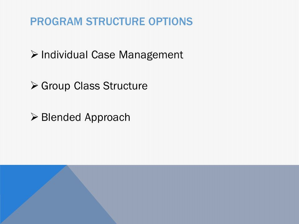 PROGRAM STRUCTURE OPTIONS  Individual Case Management  Group Class Structure  Blended Approach