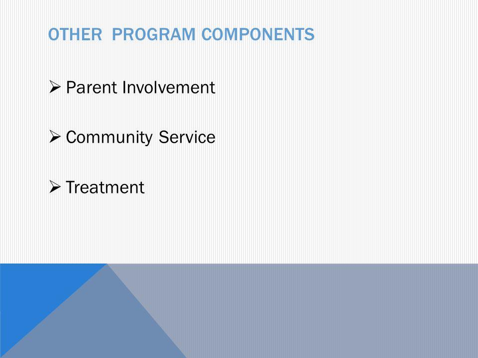 OTHER PROGRAM COMPONENTS  Parent Involvement  Community Service  Treatment