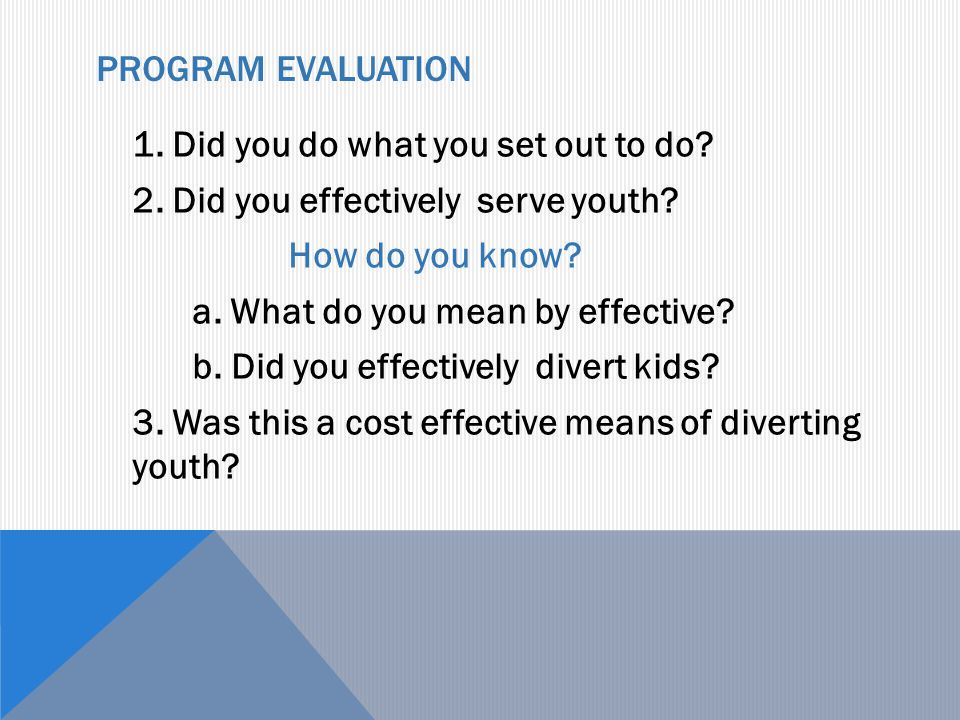 PROGRAM EVALUATION 1. Did you do what you set out to do? 2. Did you effectively serve youth? How do you know? a. What do you mean by effective? b. Did