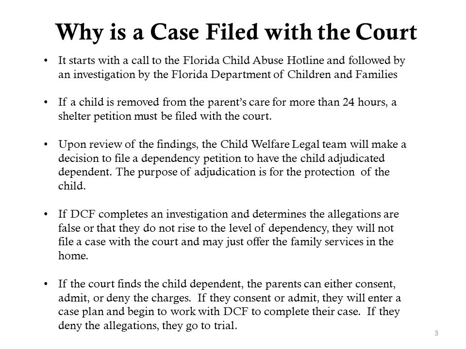Why is a Case Filed with the Court m their record. 3 It starts with a call to the Florida Child Abuse Hotline and followed by an investigation by the