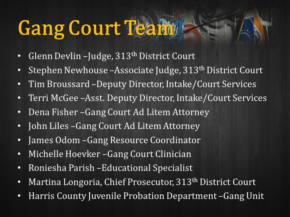 Gang Court Team Glenn Devlin –Judge, 313 th District Court Stephen Newhouse –Associate Judge, 313 th District Court Tim Broussard –Deputy Director, Intake/Court Services Terri McGee –Asst.