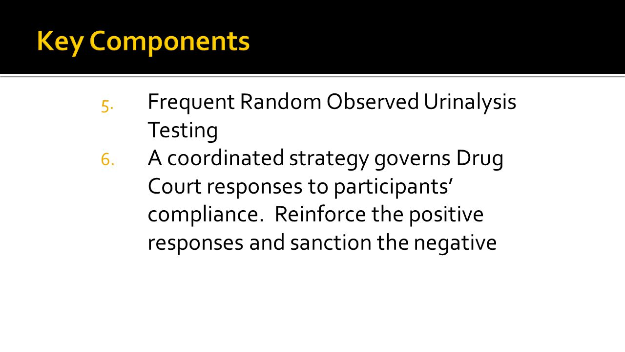 5. Frequent Random Observed Urinalysis Testing 6.