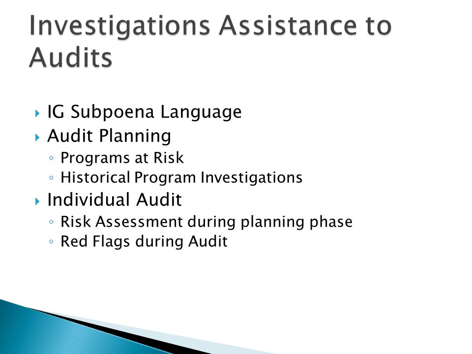  IG Subpoena Language  Audit Planning ◦ Programs at Risk ◦ Historical Program Investigations  Individual Audit ◦ Risk Assessment during planning ph