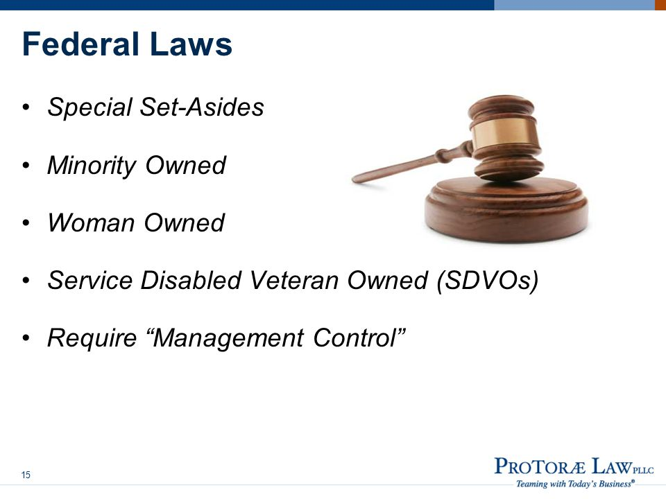 Federal Laws Special Set-Asides Minority Owned Woman Owned Service Disabled Veteran Owned (SDVOs) Require Management Control 15