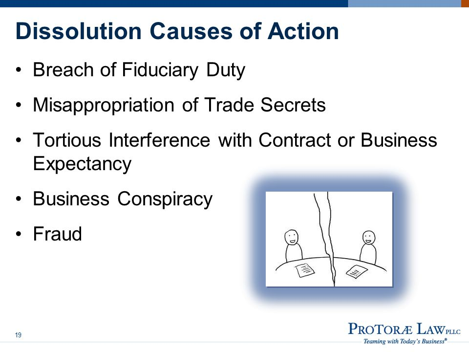 Dissolution Causes of Action Breach of Fiduciary Duty Misappropriation of Trade Secrets Tortious Interference with Contract or Business Expectancy Business Conspiracy Fraud 19