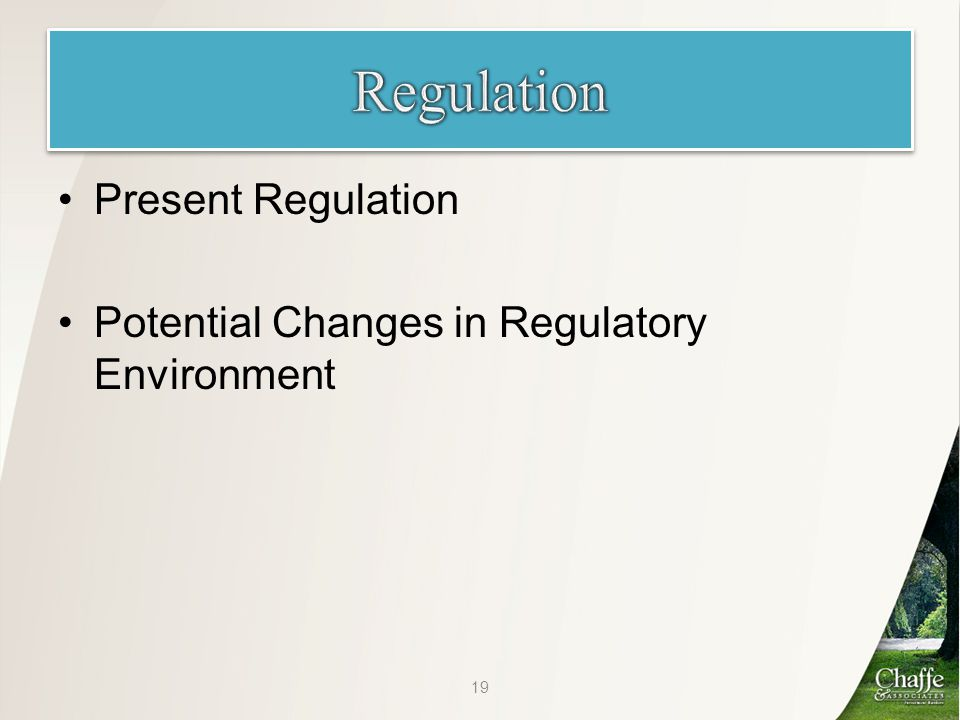 Present Regulation Potential Changes in Regulatory Environment 19