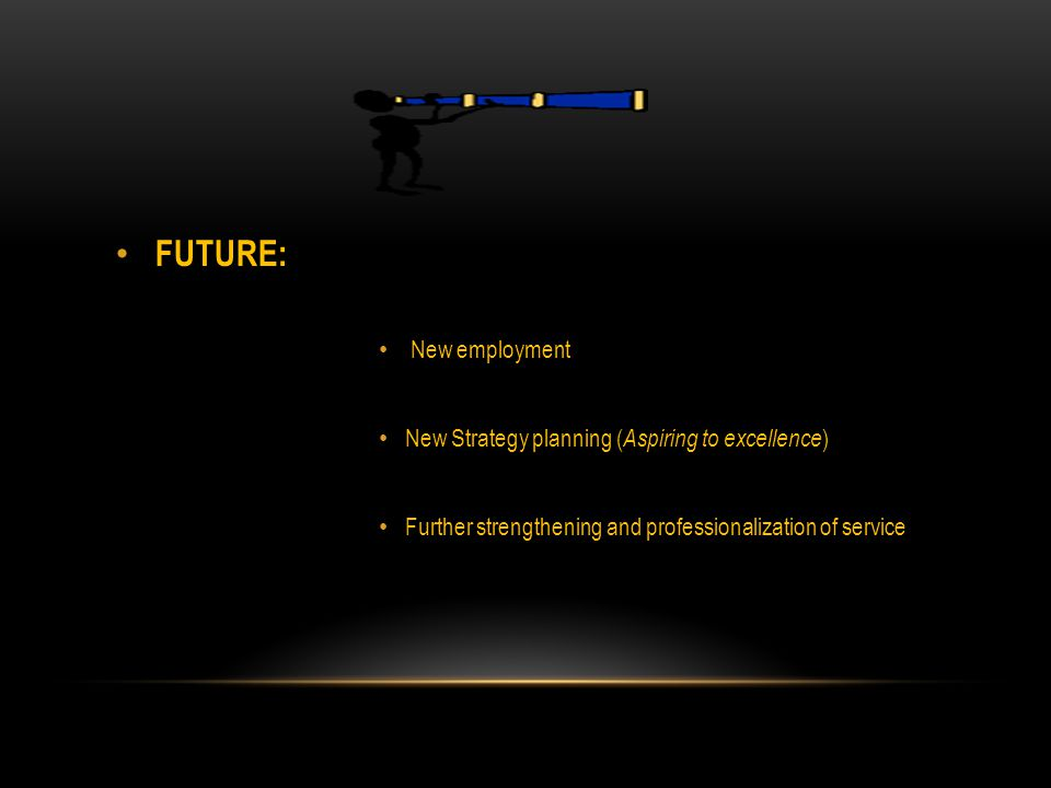 FUTURE: New employment New Strategy planning ( Aspiring to excellence ) Further strengthening and professionalization of service