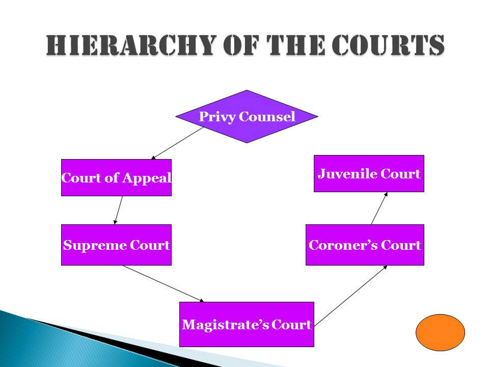  Juvenile Court  Coroner's Court  Magistrate's Court  Supreme Court  Court of Appeals  Privy Counsel