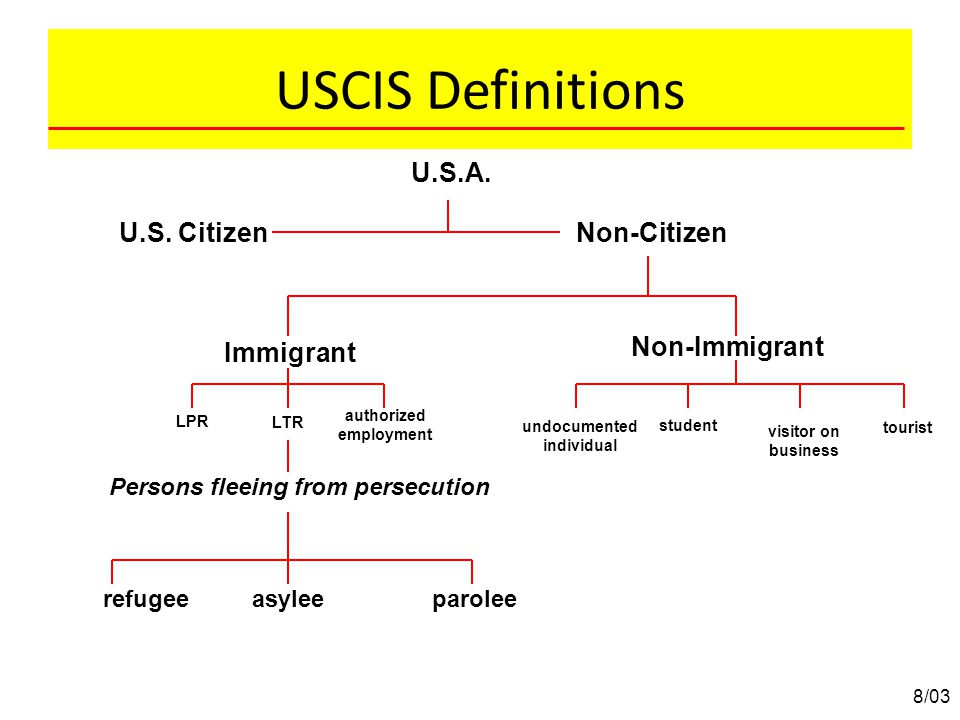 U.S.A. U.S. CitizenNon-Citizen Persons fleeing from persecution LPR Immigrant LTR authorized employment Non-Immigrant student tourist refugeeasyleepar