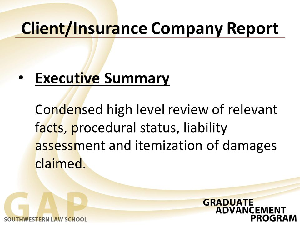 Client/Insurance Company Report Executive Summary Condensed high level review of relevant facts, procedural status, liability assessment and itemization of damages claimed.