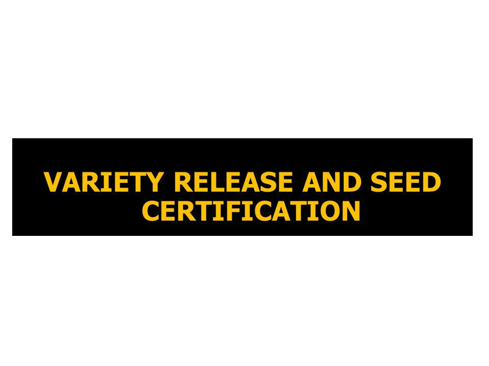 VARIETY RELEASE AND SEED CERTIFICATION