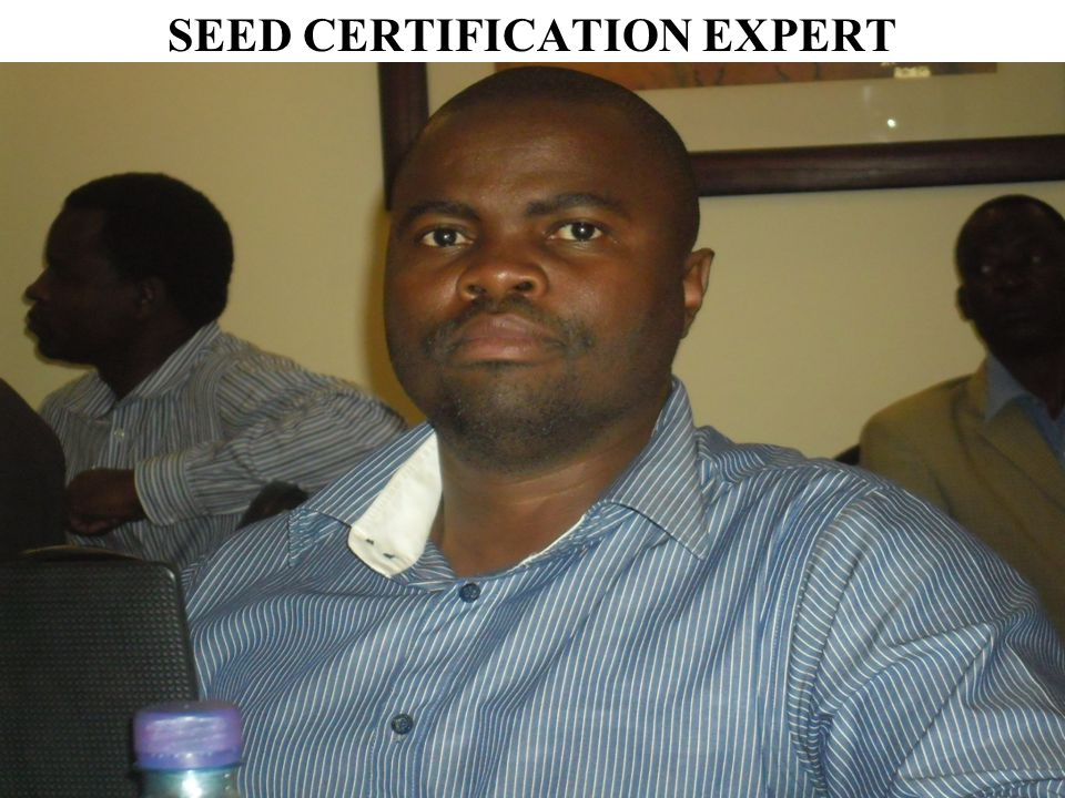 SEED CERTIFICATION EXPERT