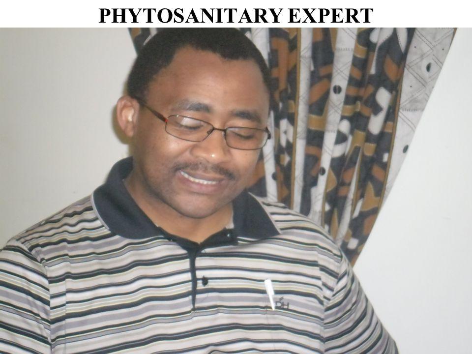 PHYTOSANITARY EXPERT