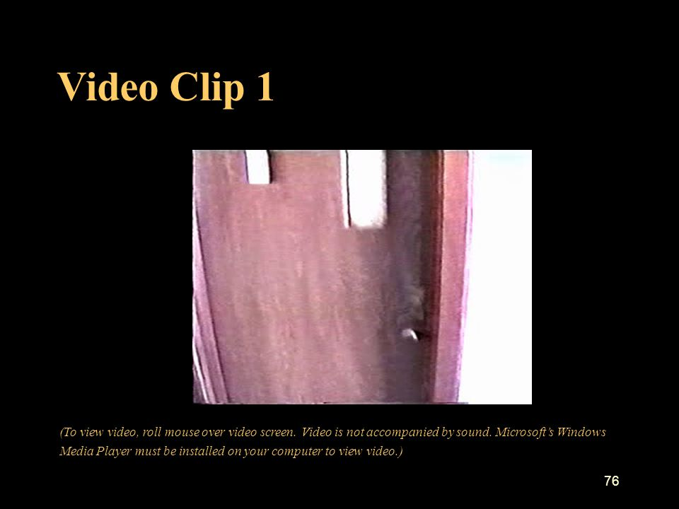 Video Clip 1 76 (To view video, roll mouse over video screen.