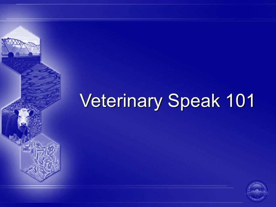 Veterinary Speak 101
