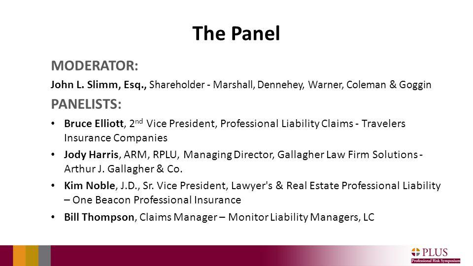 The Panel MODERATOR: John L.