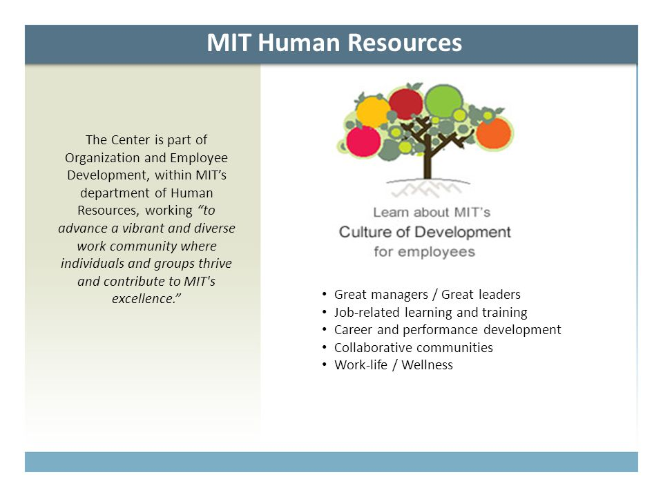 "MIT Human Resources The Center is part of Organization and Employee Development, within MIT's department of Human Resources, working ""to advance a vib"