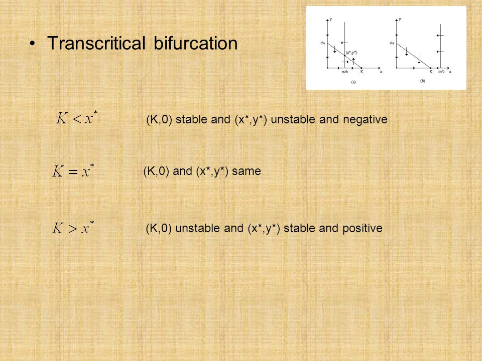 Transcritical bifurcation (K,0) stable and (x*,y*) unstable and negative (K,0) and (x*,y*) same (K,0) unstable and (x*,y*) stable and positive