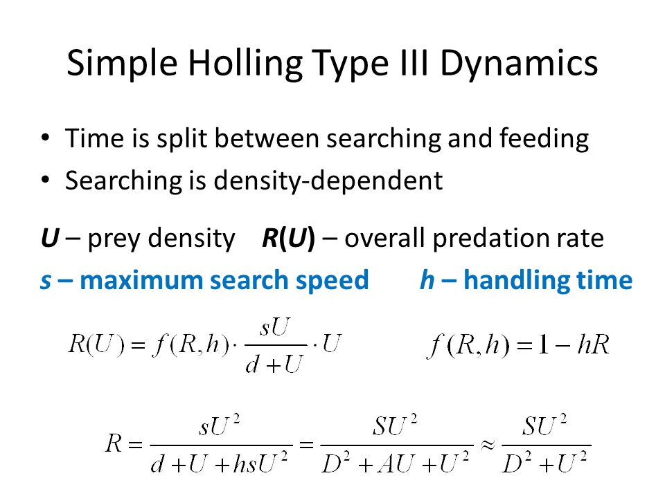 Simple Holling Type III Dynamics Time is split between searching and feeding Searching is density-dependent U – prey density R(U) – overall predation rate s – maximum search speed h – handling time