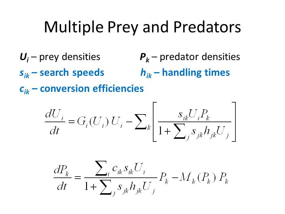 Multiple Prey and Predators U i – prey densities P k – predator densities s ik – search speeds h ik – handling times c ik – conversion efficiencies