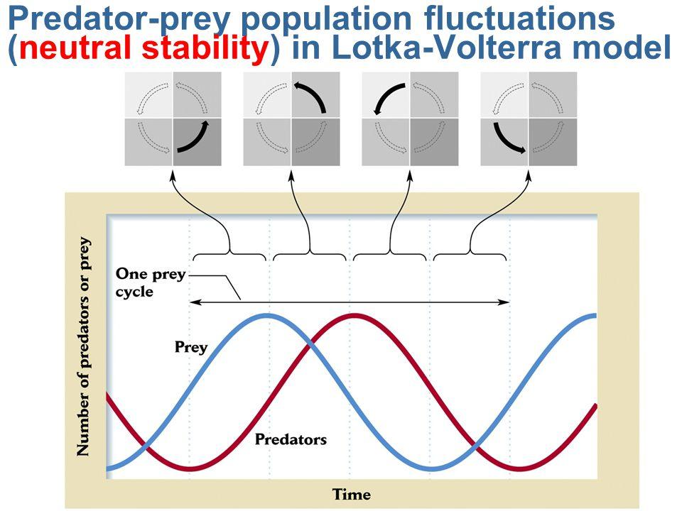 Predator-prey population fluctuations (neutral stability) in Lotka-Volterra model