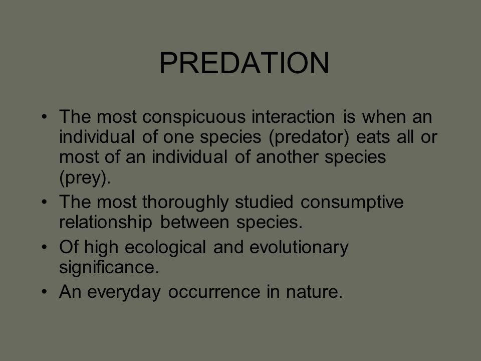 PREDATION The most conspicuous interaction is when an individual of one species (predator) eats all or most of an individual of another species (prey).