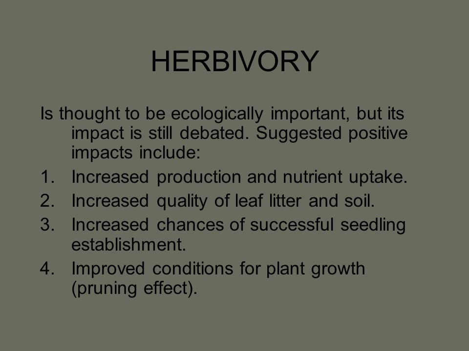 HERBIVORY Is thought to be ecologically important, but its impact is still debated.