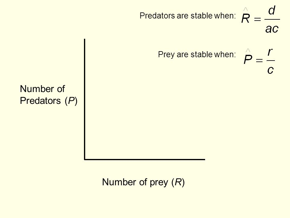 Number of prey (R) Number of Predators (P) Predators are stable when: Prey are stable when: