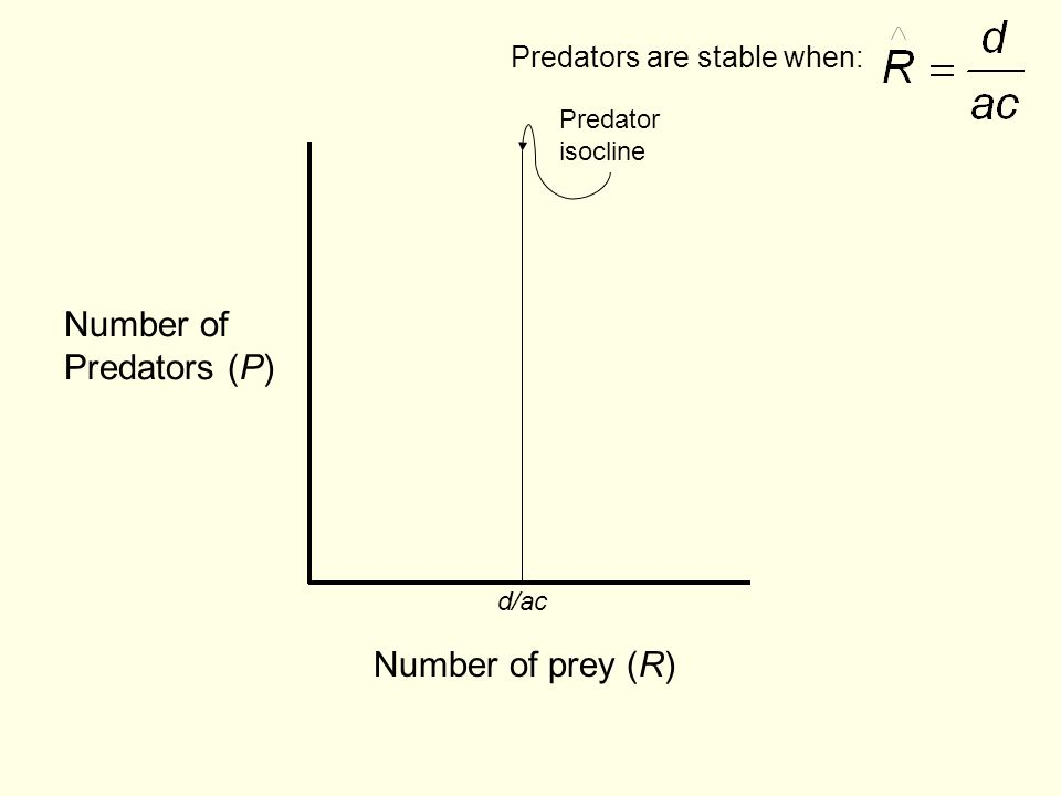 Number of prey (R) Number of Predators (P) d/ac Predator isocline Predators are stable when: