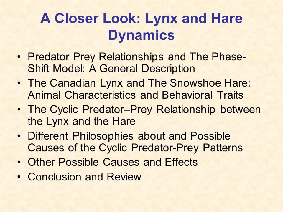 The Lynx and the Snowshoe Hare Which factors cause the cyclical oscillations in the population? Presented by Megan McCarthy Winter Ecology – Spring 20