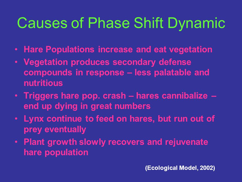 Description of the Dynamics Cycle First seen by Hudson Fur Traders 100 years ago 10 year population cycles Went from 7-9 hares per hectare in '90 to 0-1 per hectare in '91 Winter after crash dropped from 30 – 3 lynx per 100 km2 Continue to die off 2 years after the hare crash (Marty, 1995)
