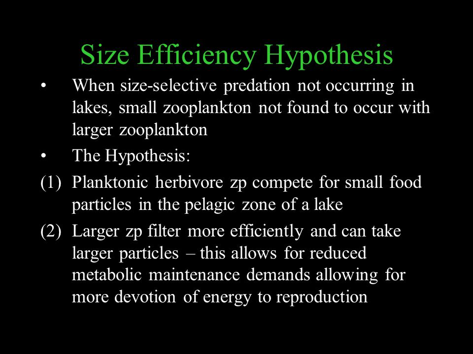 Size Efficiency Hypothesis When size-selective predation not occurring in lakes, small zooplankton not found to occur with larger zooplankton The Hypothesis: (1)Planktonic herbivore zp compete for small food particles in the pelagic zone of a lake (2)Larger zp filter more efficiently and can take larger particles – this allows for reduced metabolic maintenance demands allowing for more devotion of energy to reproduction