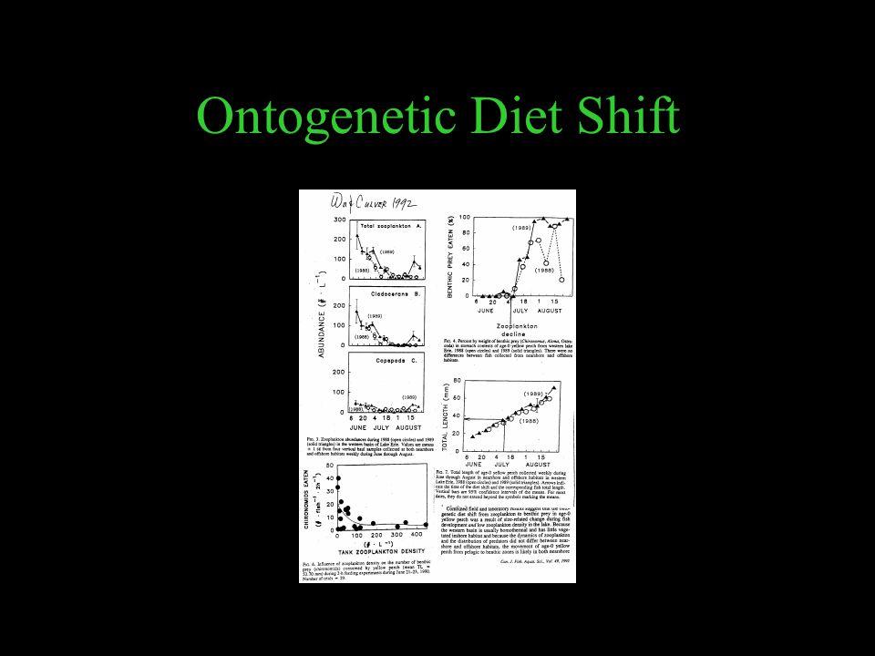Ontogenetic Diet Shift