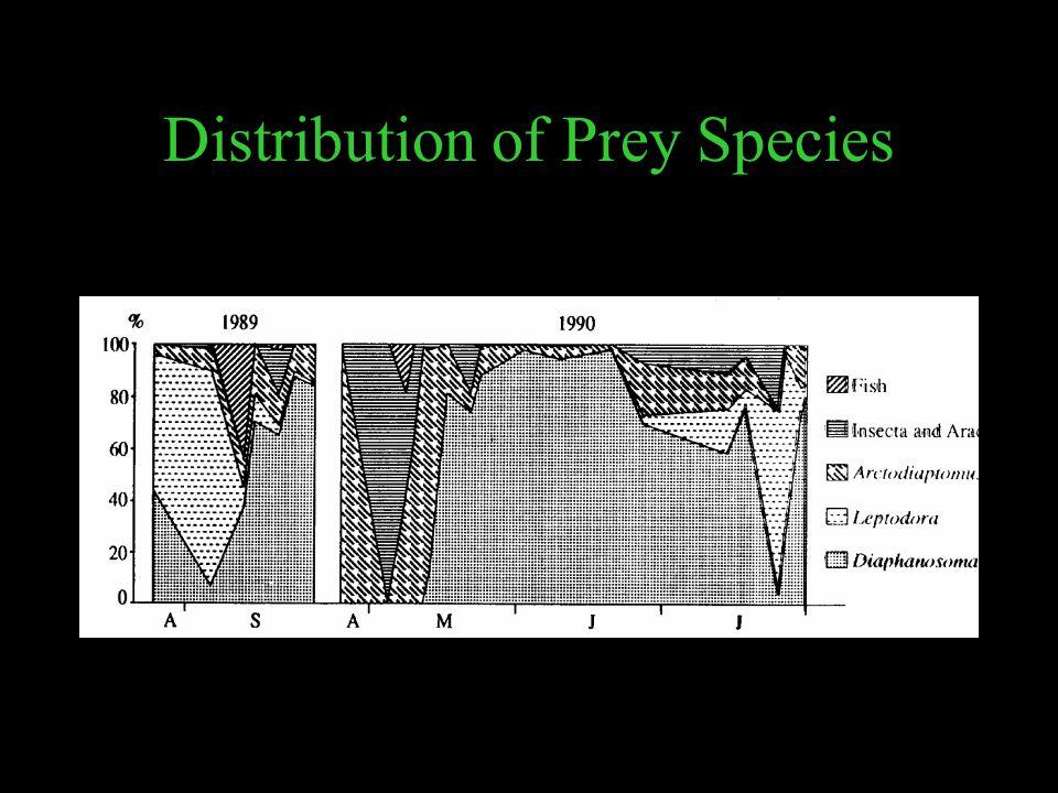 Distribution of Prey Species