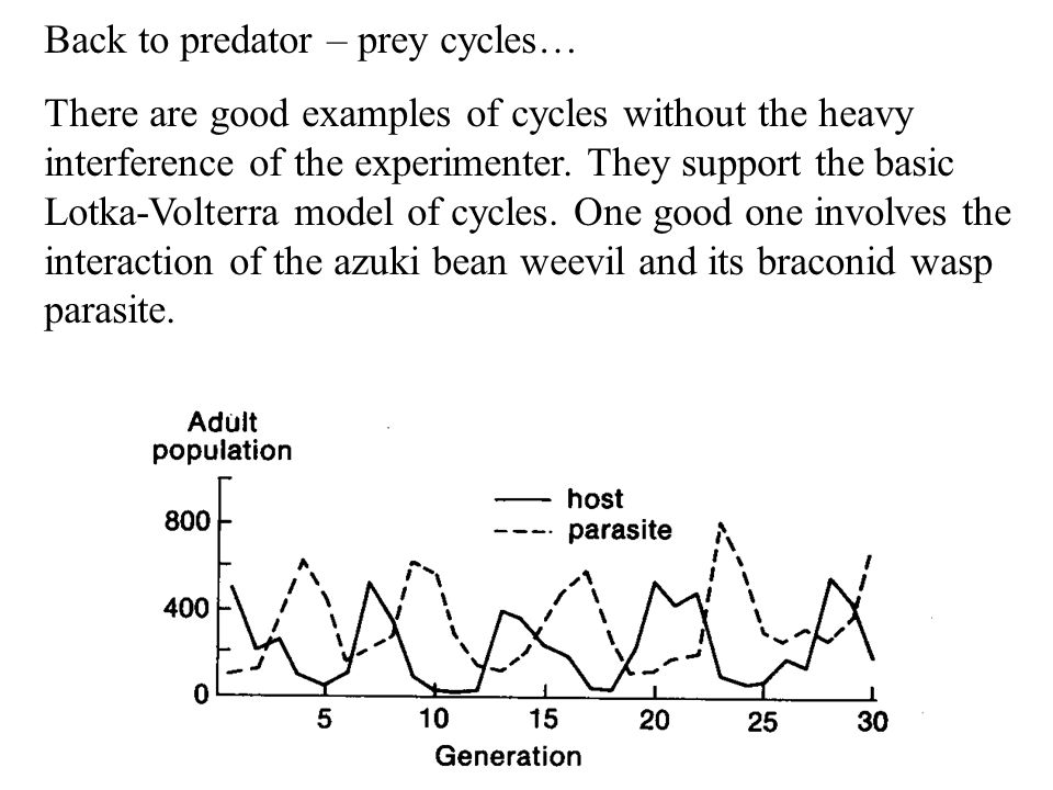 Back to predator – prey cycles… There are good examples of cycles without the heavy interference of the experimenter. They support the basic Lotka-Vol