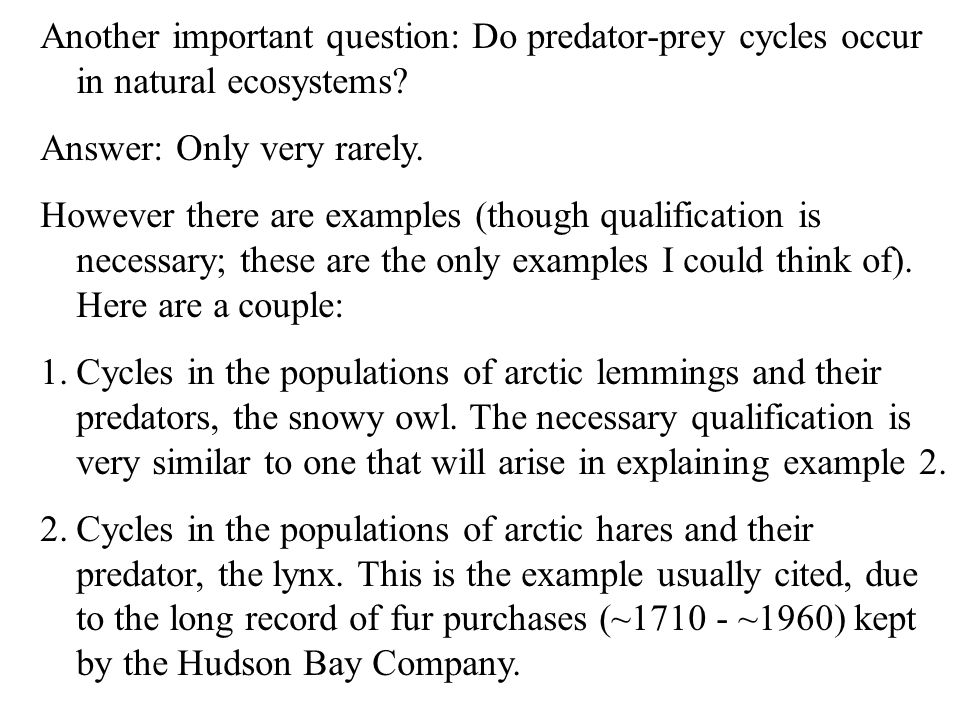 Another important question: Do predator-prey cycles occur in natural ecosystems.