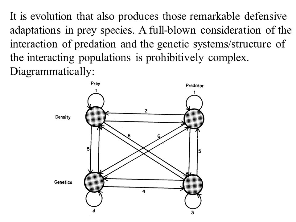 It is evolution that also produces those remarkable defensive adaptations in prey species.