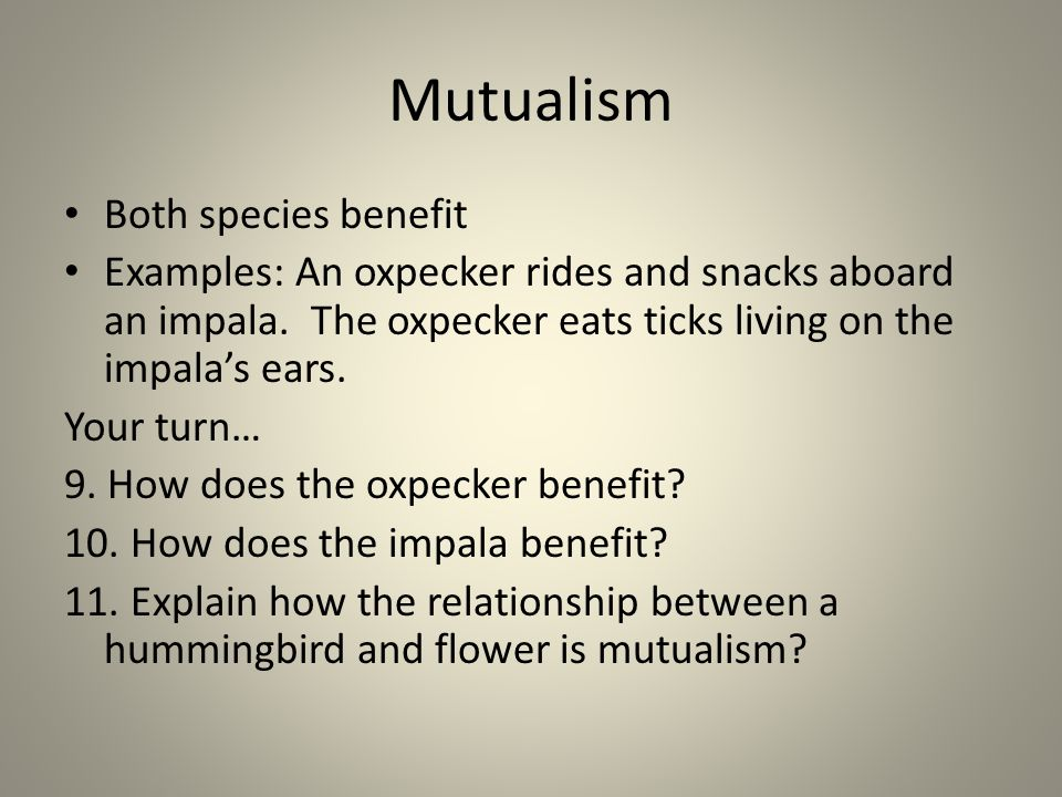 Mutualism Both species benefit Examples: An oxpecker rides and snacks aboard an impala. The oxpecker eats ticks living on the impala's ears. Your turn