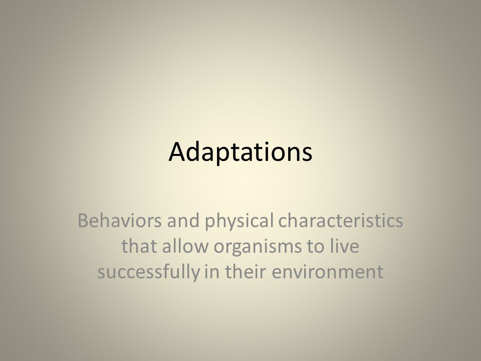 Adaptations Behaviors and physical characteristics that allow organisms to live successfully in their environment
