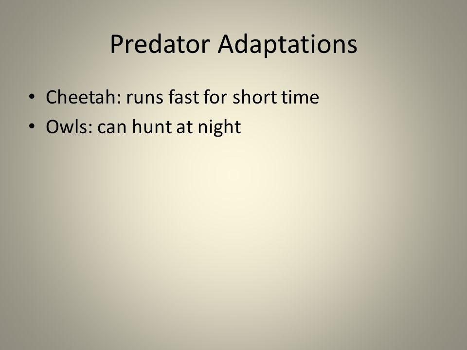 Predator Adaptations Cheetah: runs fast for short time Owls: can hunt at night